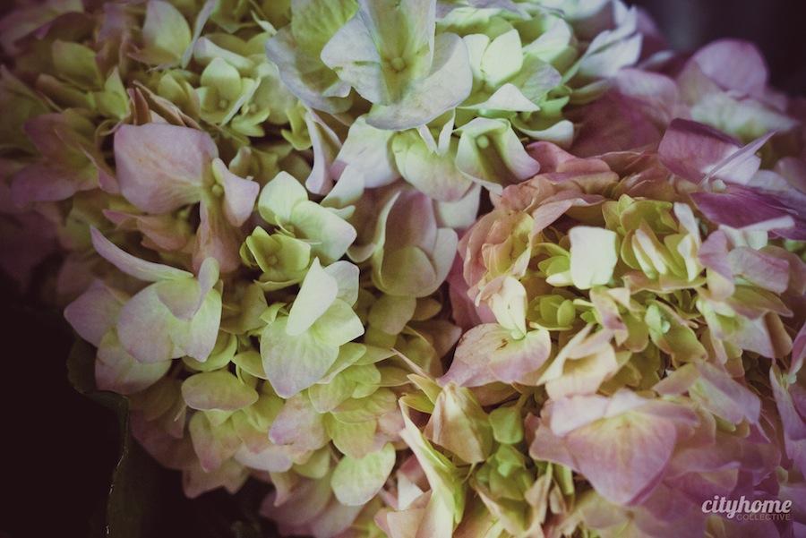 Blooms-Co-Downtown-SLC-Flower-Shop-6