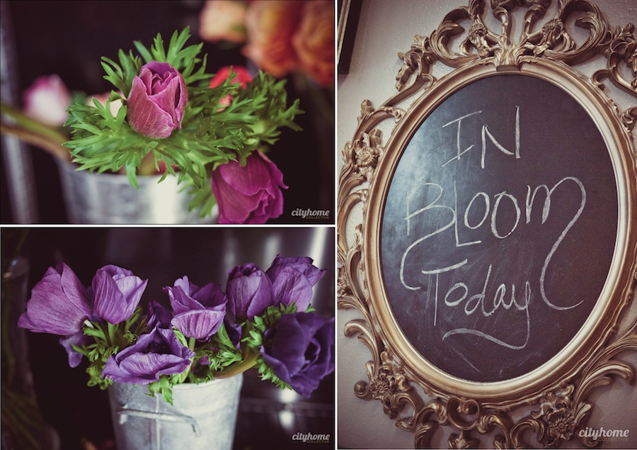 Blooms-and-Co-Salt-Lake-Local-Flower-Shop