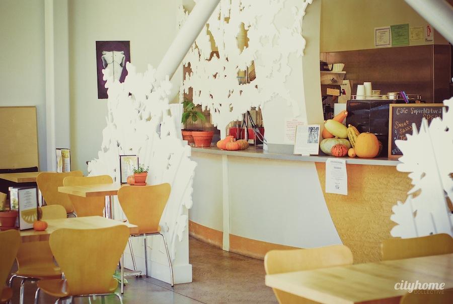 Prana-Yoga-Salt-Lake-Local-Business-33