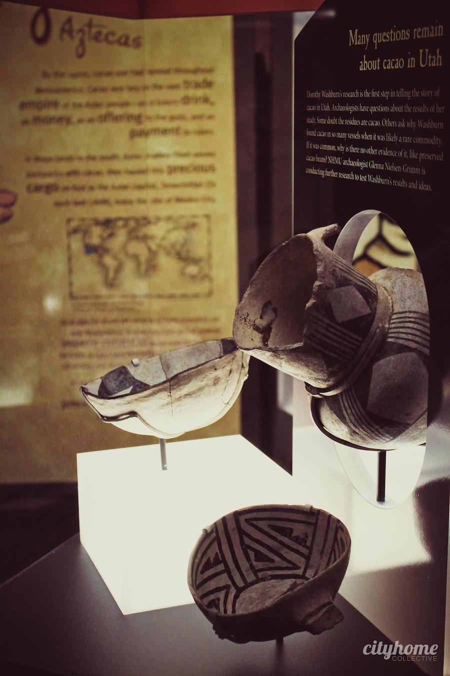 chocolate-exhibit-nhmu-45