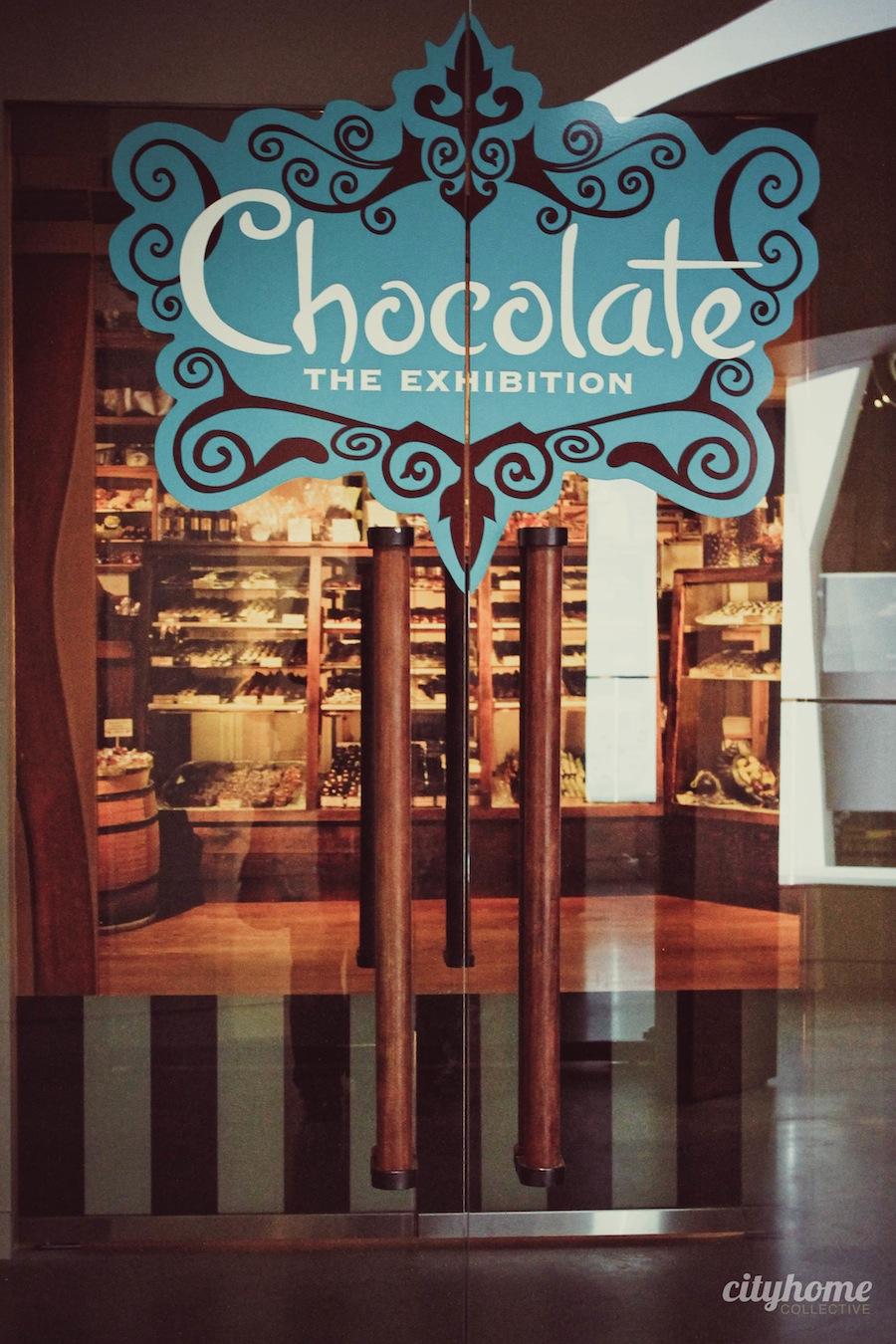 chocolate-exhibit-nhmu-61