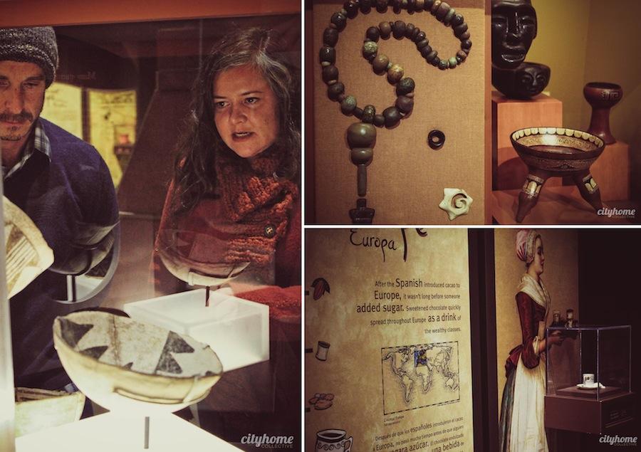 chocolate-exhibit-nhmu-group1