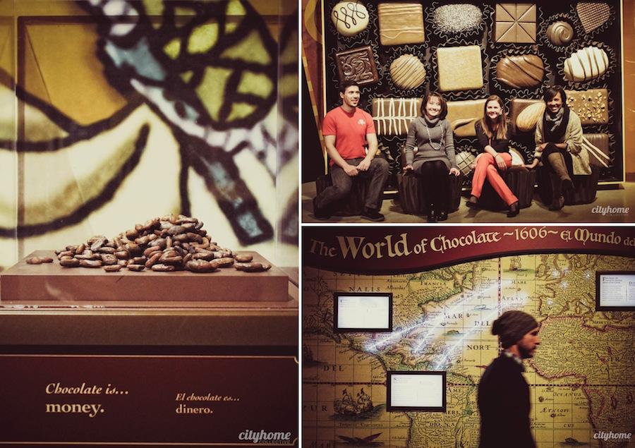 chocolate-exhibit-nhmu-group6
