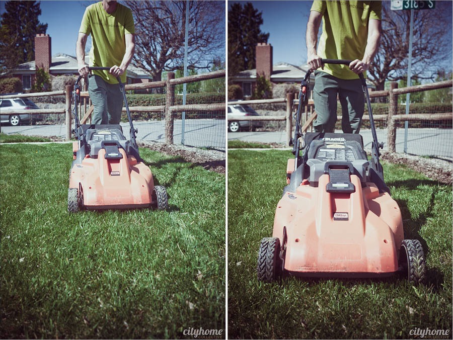 wasatch-eco-mow-group1