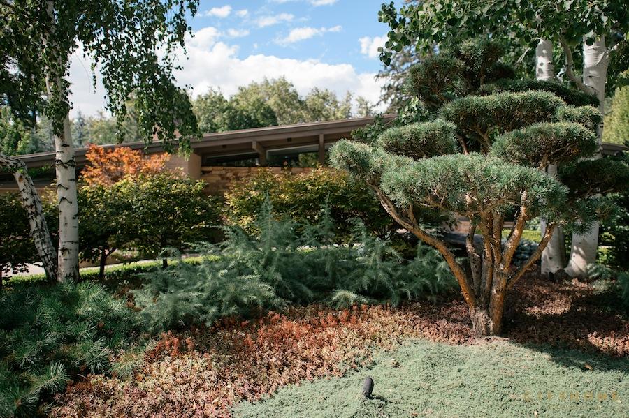 willie-eschenfelder-landscaping-16