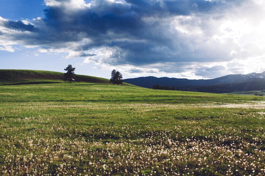 YellowstoneUnderCanvas-311