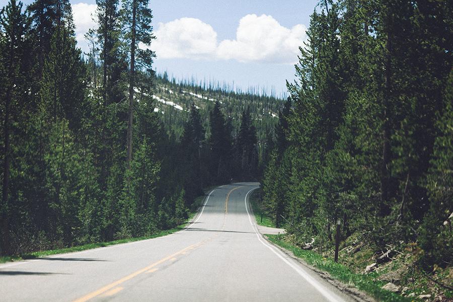 YellowstoneUnderCanvas-399
